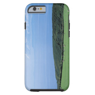 view of sheep grazing on lush hillside iPhone 6 case