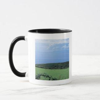 view of sheep grazing on lush hillside mug