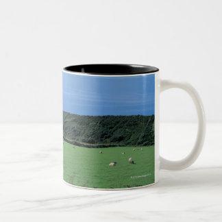 view of sheep grazing on lush hillside Two-Tone coffee mug