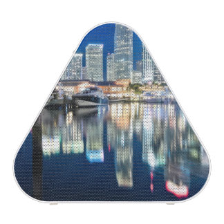 View of skyline with reflection in water, Miami Speaker