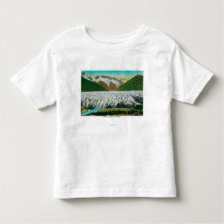 View of Spencer Glacier, Near Seward, Alaska Toddler T-shirt