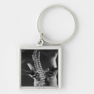 View of spinal chord keychain