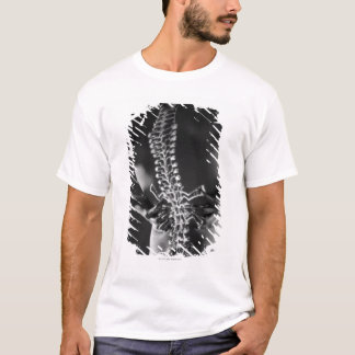 View of spinal chord T-Shirt