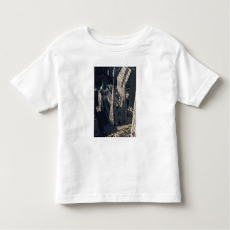 View of St. Patrick's Cathedral Toddler T-shirt