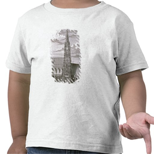 View of St. Stephan's Cathedral T-shirt