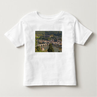 View of the Alte Brucke or Old Bridge Toddler T-shirt