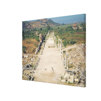View of the Arcadian Way Canvas Print