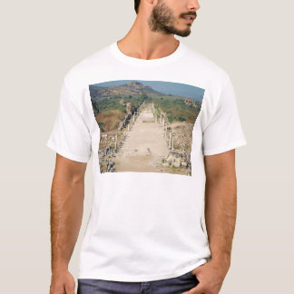 View of the Arcadian Way T-Shirt