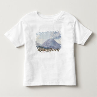 View of the Atrio di Cavallo between Somma and Ves Toddler T-shirt