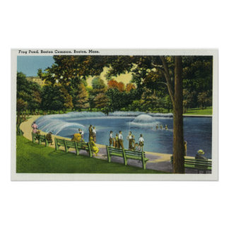 View of the Boston Common Frog Pond Poster