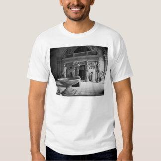 View of the Caryatids Tribune Tee Shirt