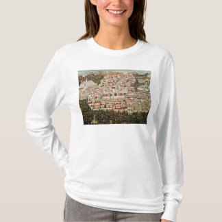 View of the city of Damascus T-Shirt