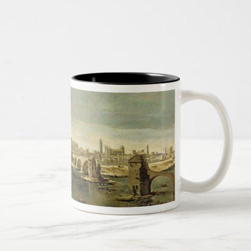 View of the City of Zaragoza Mugs