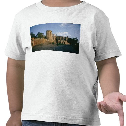 View of the city t-shirts