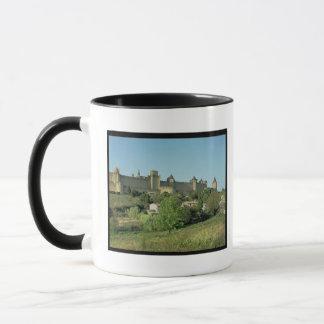 View of the city walls mug