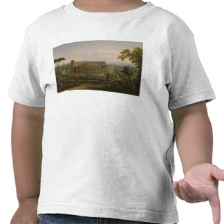 View of the Colosseum from the Palatine Hill Shirt