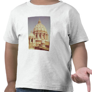View of the dome 1546-93 tee shirts