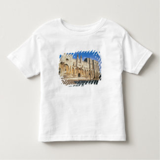 View of the entrance facade of the Palace (photo) Toddler T-shirt