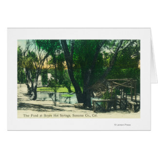 View of the Hot Springs Pond Card