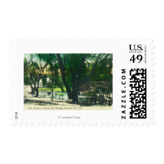 View of the Hot Springs Pond Postage