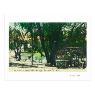 View of the Hot Springs Pond Postcard