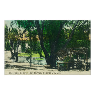 View of the Hot Springs Pond Poster