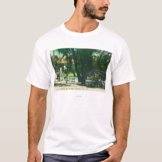 View of the Hot Springs Pond T-Shirt