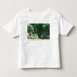 View of the Hot Springs Pond Toddler T-shirt