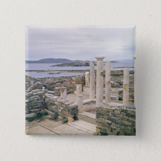 View of the House of Cleopatra Pinback Button