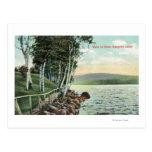 View of the Lake Shore Postcard