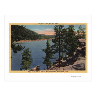 View of the Lake through the Pines Postcard