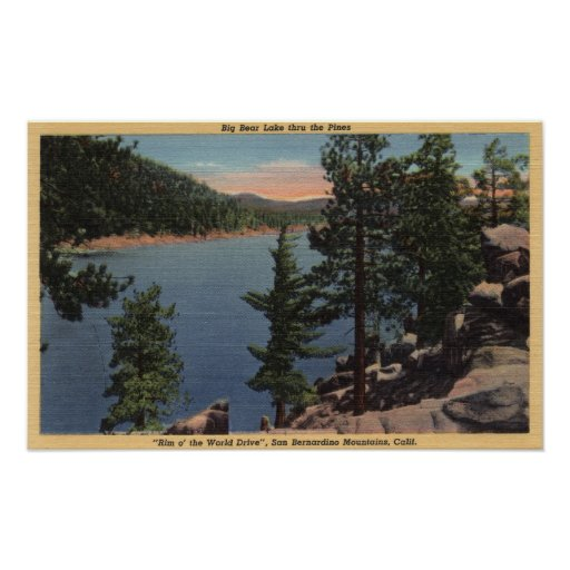 View of the Lake through the Pines Print