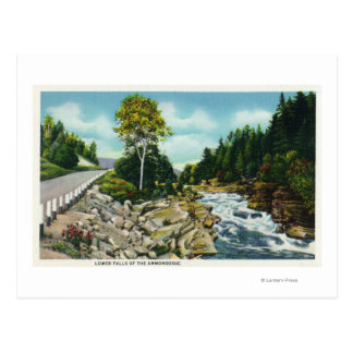View of the Lower Falls of the Ammonoosuc River Postcards