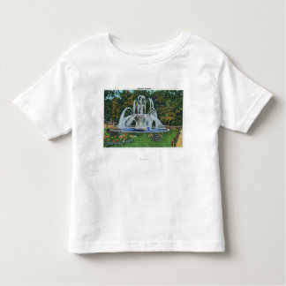 View of the Memorial Fountain, Vassar College Toddler T-shirt