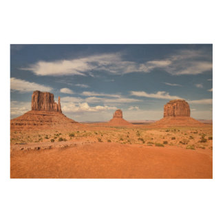 View of the Mittens, Monument Valley Wood Wall Art