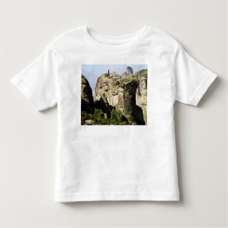 View of the Monastery of the Holy Trinity Toddler T-shirt