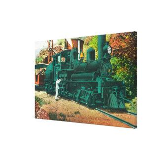View of the Mt. Tamalpais Railway Train Canvas Print
