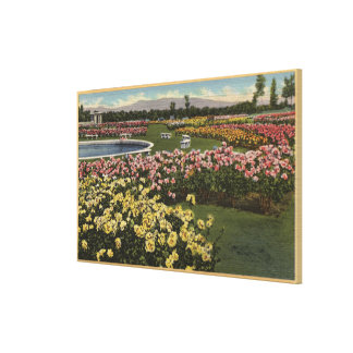 View of the Municipal Rose Garden Canvas Print