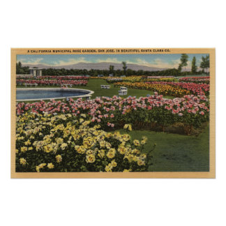 View of the Municipal Rose Garden Posters