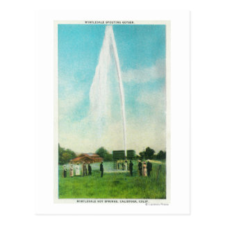 View of the Myrtledale Geyser at the Hot Springs Postcard
