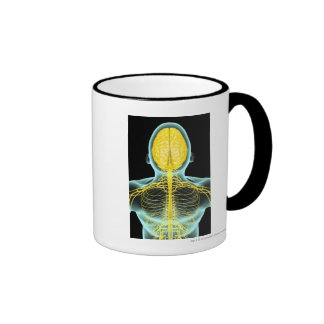 View of the nerves in the upper body from above ringer coffee mug