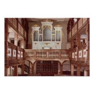 View of the Organ Poster