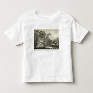 View of the Petrifying Spring commonly called the Toddler T-shirt