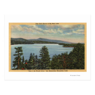 View of the Pine Clad Shores of Lake Postcard