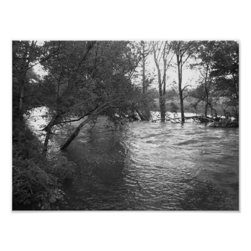 View of the River Print