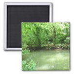 View of the River Refrigerator Magnet