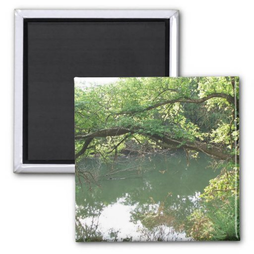 View of the River Refrigerator Magnets