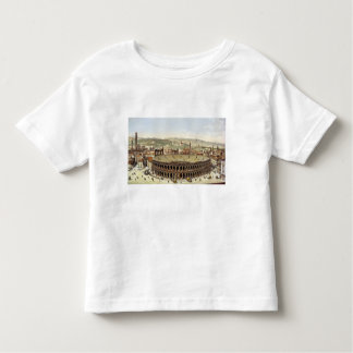 View of the Roman Amphitheatre, Verona, engraved b T Shirts