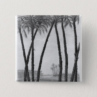 View of the ruins Memphis seen from south east Pinback Button