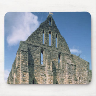 View of the ruins mouse pad